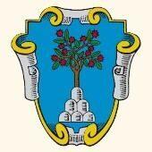 Il Marroneto logo